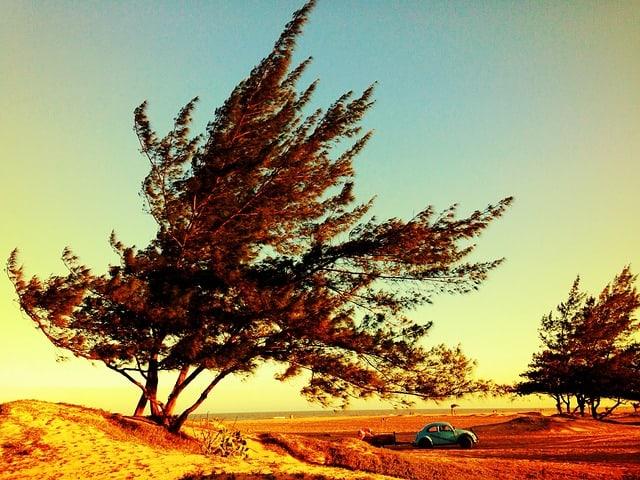 conduccion viento car hire malaga airport